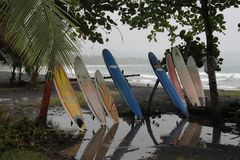 Water, Tree, Leisure, Recreation
