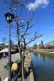 Water, tree, plant, sky, woody, waterway, reflection, street, light, spring, branch, river, tourism, recreation, vacation, leisure. Photo of water, tree, plant royalty free stock images