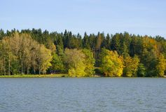 Water and trees Royalty Free Stock Photography