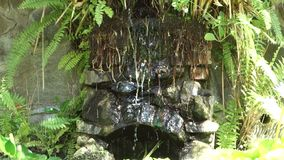 Water trickling into a fish pond in the caribbean. Tropical foliage growing around a stone fountain as seen in a courtyard on bequia stock video footage