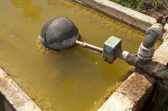Water Trough. Rural drinking water trough for animals Stock Image