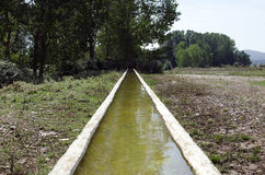 Water trough Stock Image