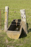 Water trough Stock Photos