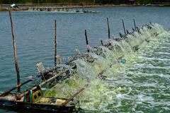 Water turbine produce oxygen for shrimp farm. Water turbine is producing oxygen for shrimp farm Stock Photos