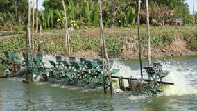 Water Turbines at Fishing Pond. Simple water turbines bringing oxygen into water supplying fish and seafood in a pond with fresh air. Water treatment for fishing stock video