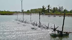 Water turbines are used to increase oxygen in aquaculture ponds video Slow motion 120 frame. Water turbines are used to increase oxygen in aquaculture ponds stock video footage