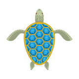 Water turtle Sapphire carapace. Stock Images