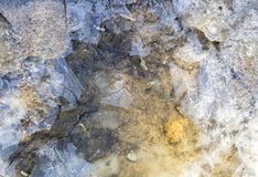 Water under ice Stock Images