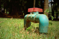 Water valve on a grass background Stock Image