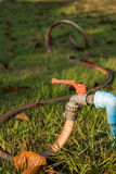 Water valve with hose on the lawn in the garden. Royalty Free Stock Image