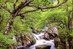 Water van nevis kreek, Schotland Royalty-vrije Stock Foto's