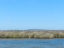 Water view of bridge. Water view of bride with tall grass and blue sky Royalty Free Stock Photos