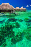 Water villas on the tropical reef, the best island holidays Stock Images