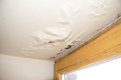 Water, vochtigheid beschadigd plafond naast venster stock foto