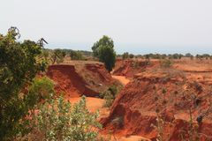 Red Canyon in middle desert stock image