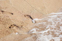 Water washes footprints Royalty Free Stock Image