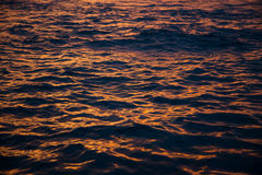 Water waves at golden sunset, sea background Stock Image