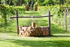 Water-well in grape field Stock Image