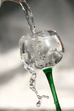 Water in wine Stock Image