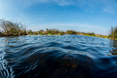 Water world Stock Photo