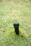 Wateraanzetsteen op grond met gras Stock Foto's