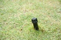 Wateraanzetsteen op grond met gras Royalty-vrije Stock Foto's