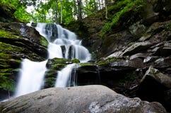 Waterall и камень Стоковое Изображение