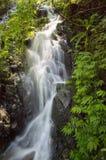 Waterall Images libres de droits