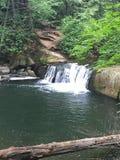Waterall no parque de Bellingham fotografia de stock