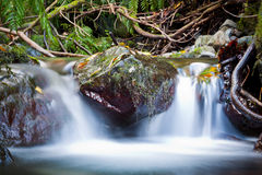 Waterall. A small waterfall in the forest Royalty Free Stock Images
