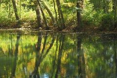 Waterbezinning bij de herfst Royalty-vrije Stock Foto
