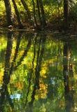 Waterbezinning bij de herfst Royalty-vrije Stock Foto's