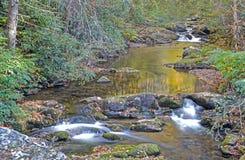 Waterbezinningen in kleine stroom in Smokies Royalty-vrije Stock Foto