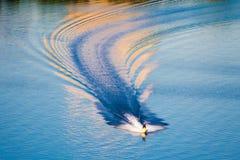 Waterbike, watercraft tworzy fala iluminować słońcem obrazy royalty free