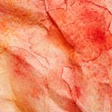 Watercolo crumpled  texture Stock Images