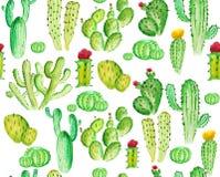 Watercoloe seamles kaktusowy wzór Zdjęcia Stock