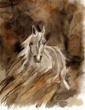 watercolor αλόγων Στοκ Εικόνα