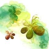 watercolor ζωγραφικής λουλουδ Στοκ Φωτογραφίες