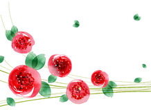 watercolor ζωγραφικής λουλουδ Στοκ Φωτογραφία