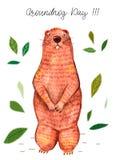 Watercolor ημέρας Groundhog απεικόνιση αποθεμάτων