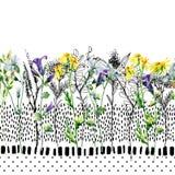 Watercolor λιβαδιών και άνευ ραφής σχέδιο λουλουδιών μελανιού Στοκ Εικόνα