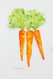 Watercolor καρότων που χρωματίζεται Στοκ Φωτογραφίες