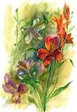 watercolor λουλουδιών Στοκ φωτογραφία με δικαίωμα ελεύθερης χρήσης