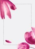 watercolor λουλουδιών ανασκόπη&sigma Μπορέστε να είστε χρήση για το Ιστός-έμβλημα, π Στοκ εικόνες με δικαίωμα ελεύθερης χρήσης
