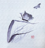 Watercolor λουλουδιών πεταλούδων Στοκ φωτογραφίες με δικαίωμα ελεύθερης χρήσης