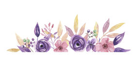 Watercolor πορφυρή συνόρων γιρλάντα ρύθμισης θερινών λουλουδιών στεφανιών πλαισίων ιώδης ρόδινη χρωματισμένη χέρι απεικόνιση αποθεμάτων