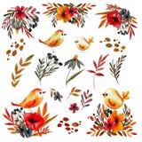 Watercolor που τίθεται με τα εκλεκτής ποιότητας λουλούδια και τα πουλιά ελεύθερη απεικόνιση δικαιώματος