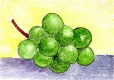 Watercolor που χρωματίζει τα γλυκά σταφύλια Στοκ φωτογραφίες με δικαίωμα ελεύθερης χρήσης