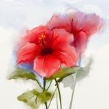 Watercolor που χρωματίζει το κόκκινο hibiscus λουλούδι Στοκ Εικόνες