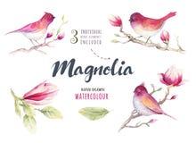 Watercolor που χρωματίζει το λουλούδι και την ταπετσαρία δ ανθών Magnolia πουλιών Στοκ φωτογραφία με δικαίωμα ελεύθερης χρήσης